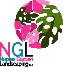 2020 NGL Logo medium 1