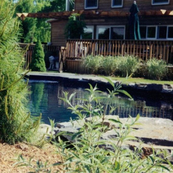 pool-side-landscaping-1024x569