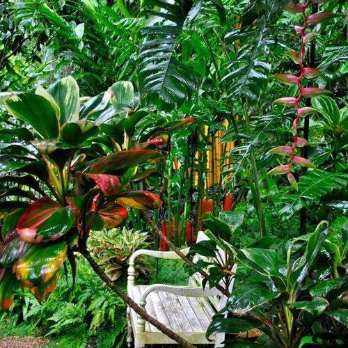 secret garden 5
