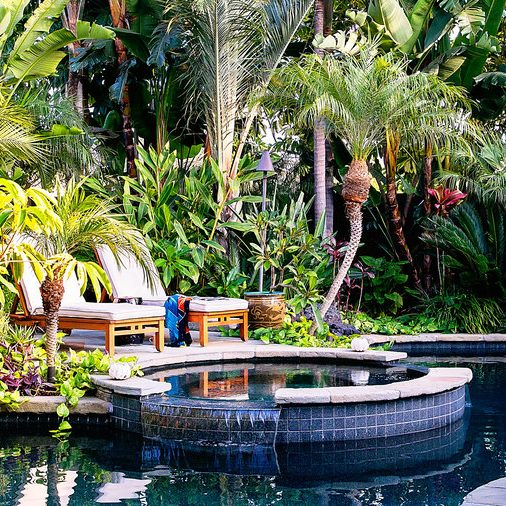 tropical privacy screening for pools